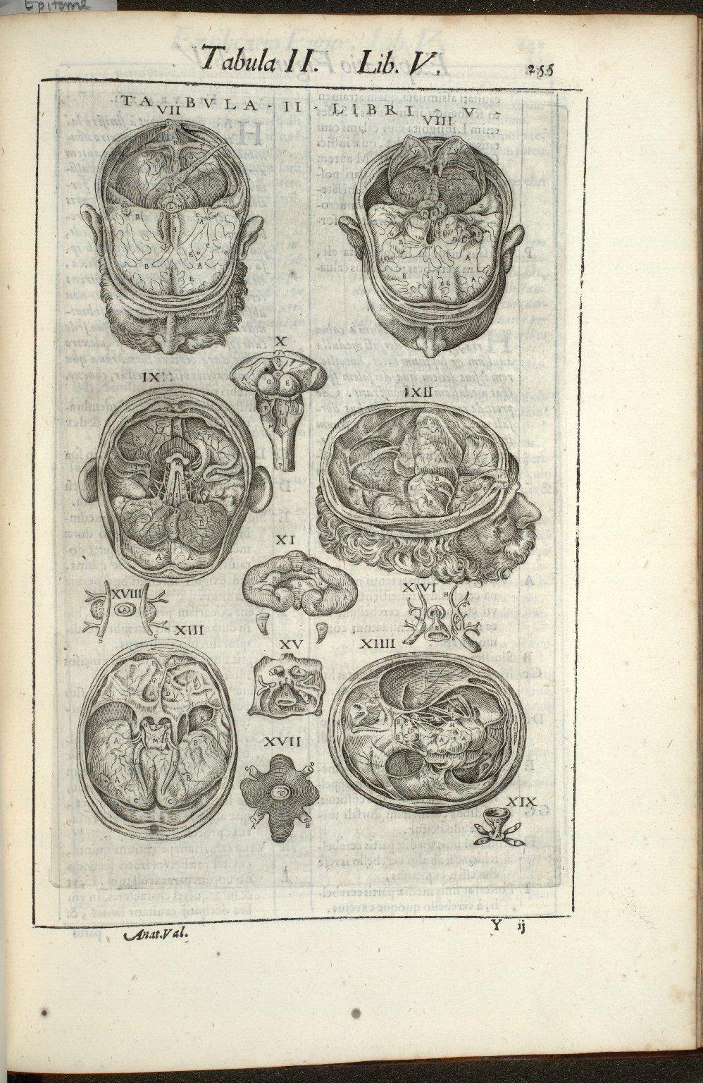 Tabula II. Libri V.
