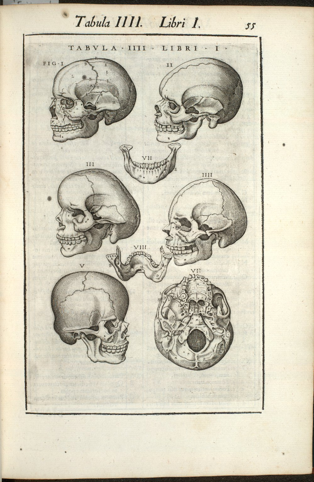 Tabula IIII. Libri I.