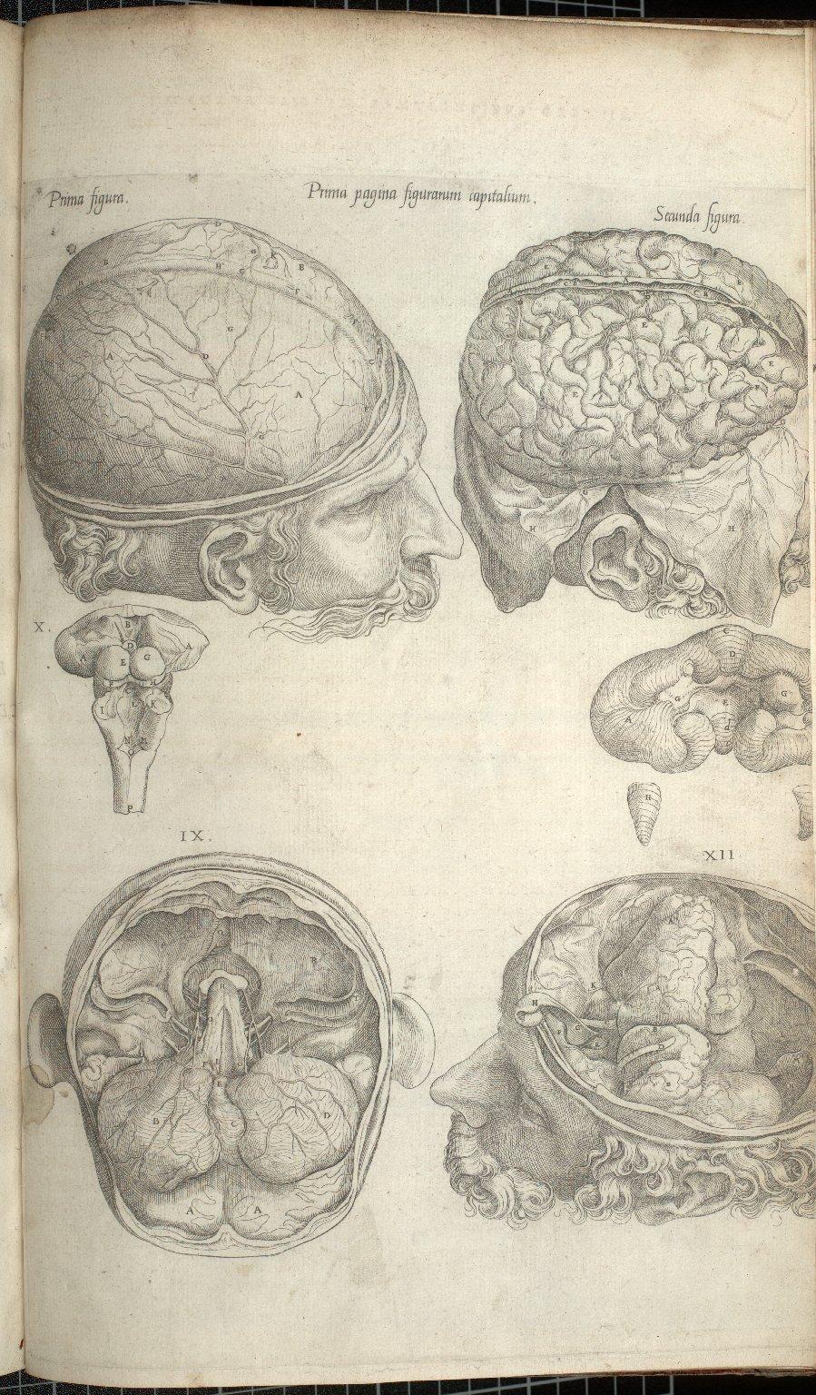 Prima Pagina Figurarum Capitalium