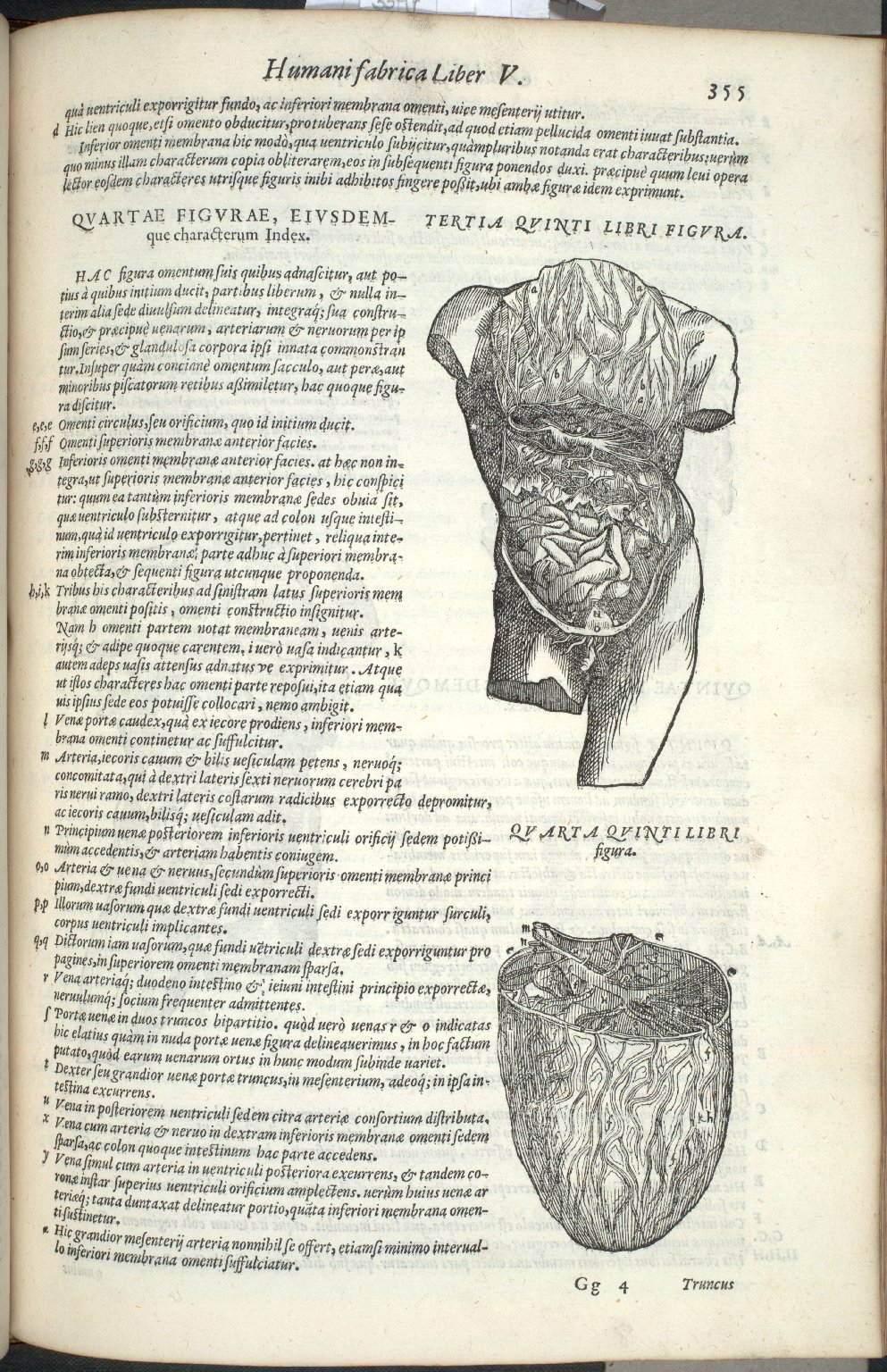 Tertia Quinti Libri Figura, Quart Quinti Libri Figura