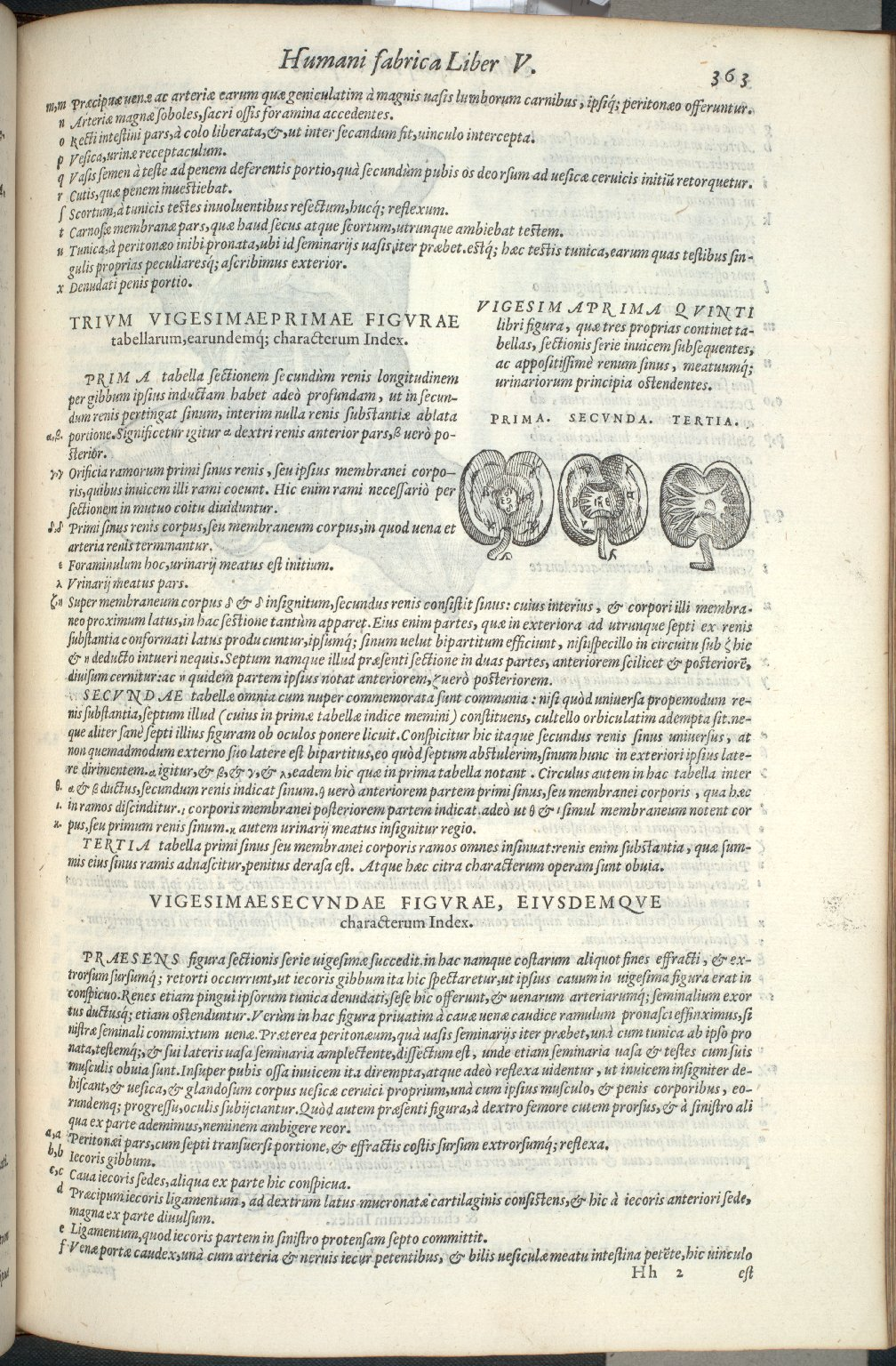 Vigesimaprima Quinti Libri Figura