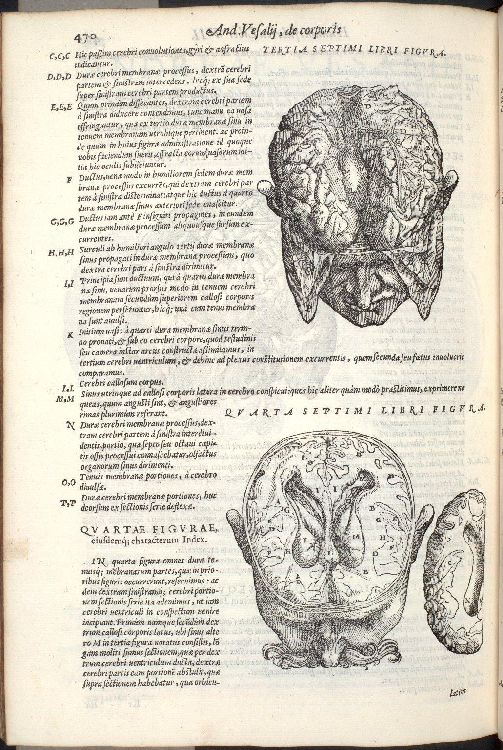 Tertia Septimi Libri Figura, Quarta Septimi Libri Figura