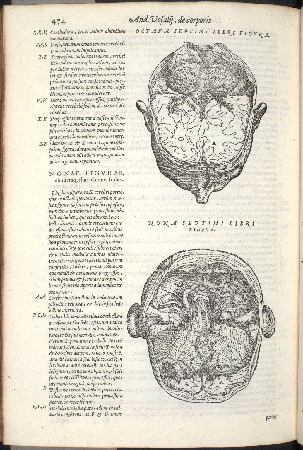 Octava Septimi Libri Figura, Nona Septimi Libri Figura