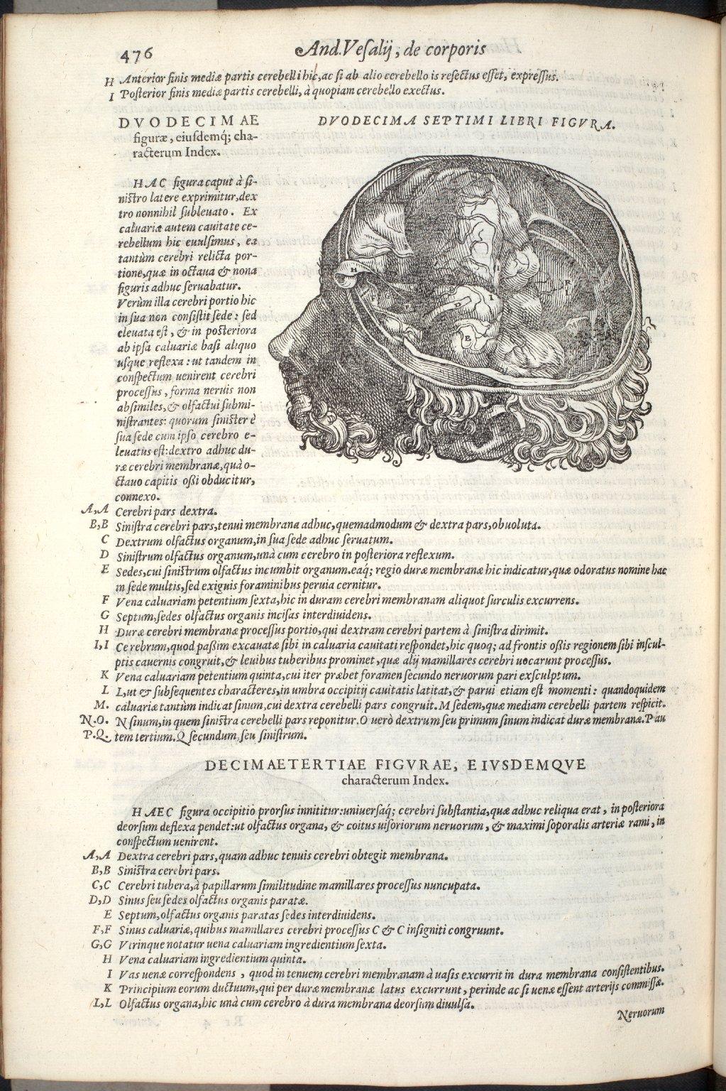 Duodecima Septimi Libri Figura