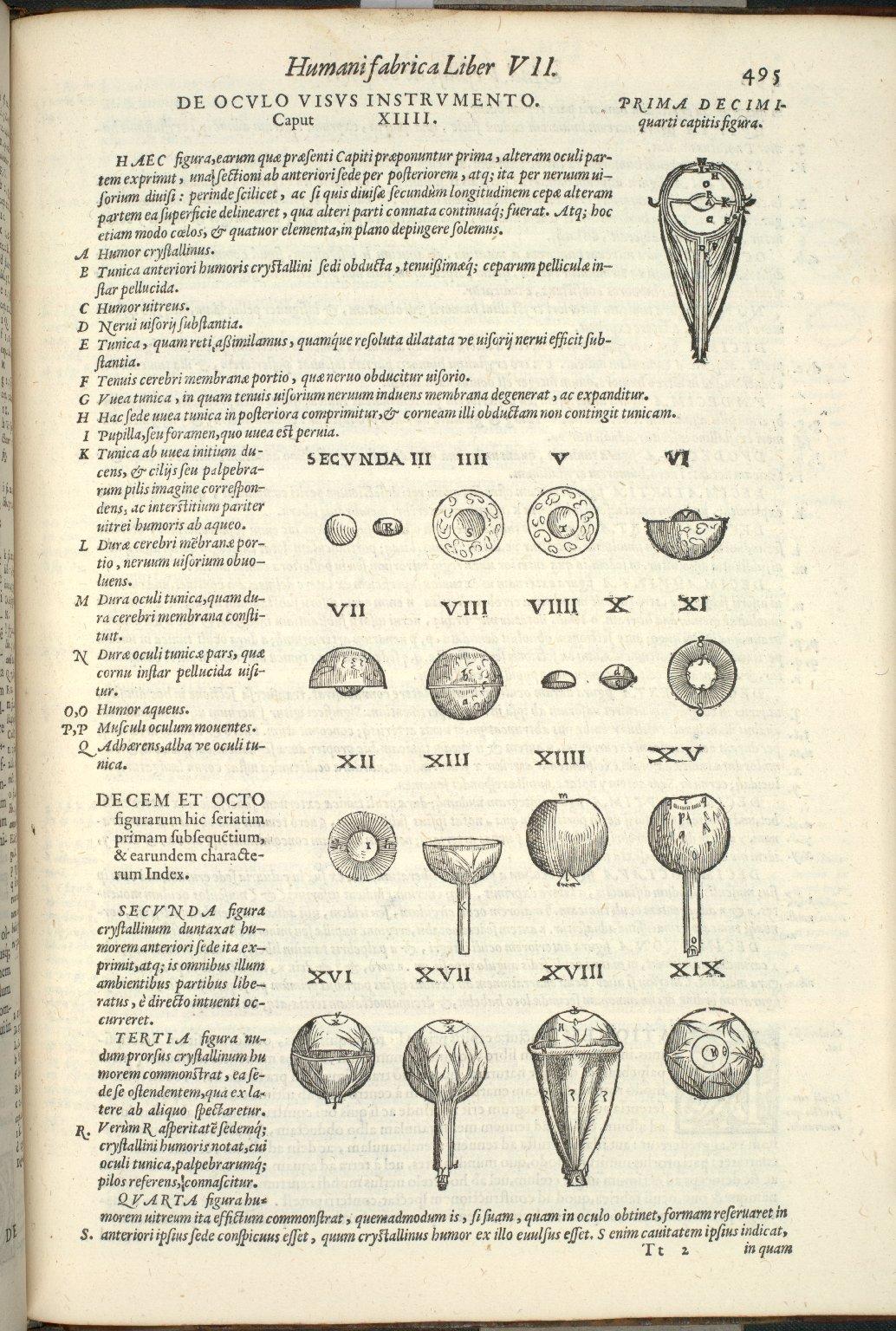 De Oculo Visus Instrumento, Caput XIIII. Fig.I-XIX