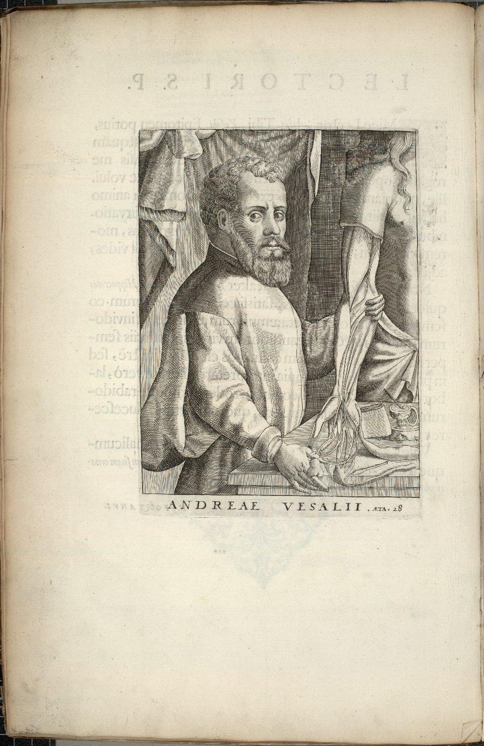 [Portrait of Vesalius]